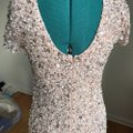 Adrianna Papell Blush Scoop Back Evening Wear Long Formal Dress Size 8 (M) Adrianna Papell Blush Scoop Back Evening Wear Long Formal Dress Size 8 (M) Image 3