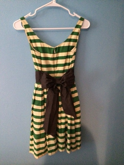Corey Lynn Calter short dress Anthropologie Striped Green Wedding Bow Sash A-line Full Sleeveless Spring Summer Caranday on Tradesy