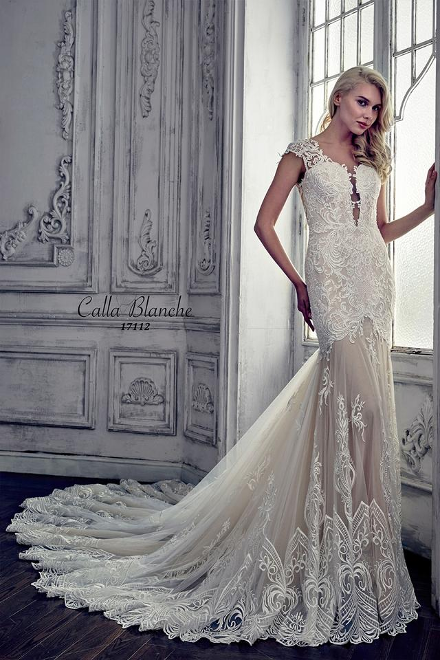 Ivory/Light Nude Lace Applique 17112 Modern