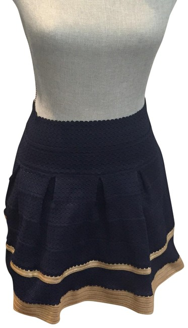 Preload https://img-static.tradesy.com/item/22676286/navy-and-gold-bubble-miniskirt-size-2-xs-26-0-1-650-650.jpg