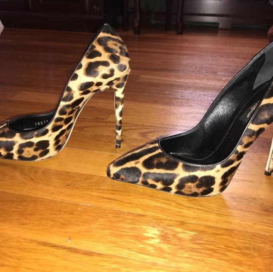 Dolce&Gabbana black, brown, leopard Pumps Image 1