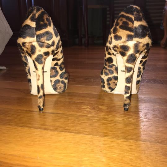 Dolce&Gabbana black, brown, leopard Pumps Image 2