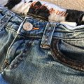 Sophie Paris Distressed Cowhide Print Size 3 Relaxed Fit Jeans-Distressed Image 6