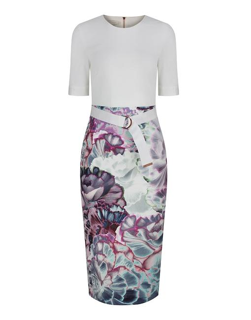 Preload https://img-static.tradesy.com/item/22687564/ted-baker-multicolor-stephie-illuminated-bloom-contrast-mid-length-cocktail-dress-size-2-xs-0-2-650-650.jpg