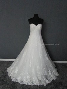 Maggie Sottero Diamond White Lace Corrina 5mb026 Feminine Wedding Dress Size 8 (M)