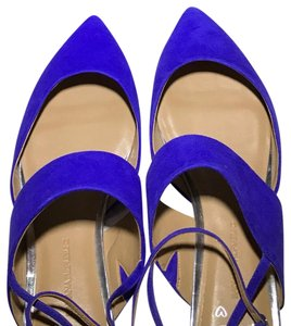 Banana Republic Purple/Blue Flats