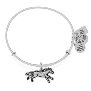Alex and Ani Alex and Ani Kentucky derby sliver bracelet AS16KD02RS