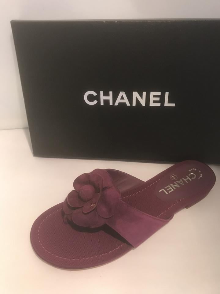 50a49f3e8343 Chanel Purple 16c Suede Camellia Flower Flat Thong Mules Sandals ...