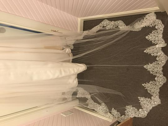 Blush by Hayley Paige Ivory Organza & Tulle Holly Formal Wedding Dress Size 10 (M)