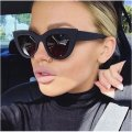Other Ladies Cat Eye leopard Sunglasses Image 1