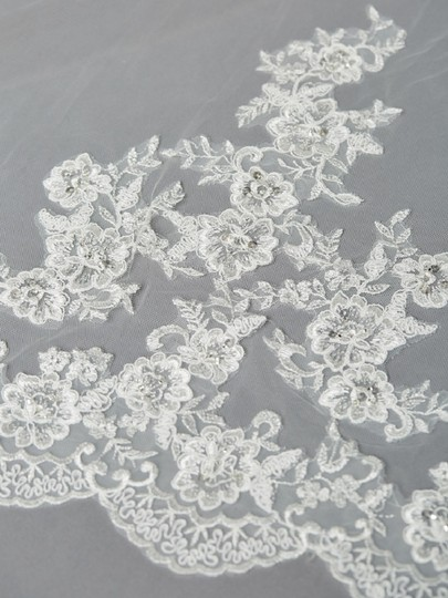 Ivory Long Beaded Lace Cathedral Bridal Veil Image 1