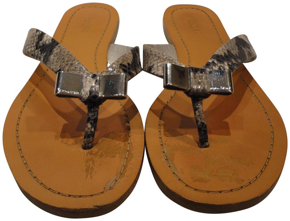 cd96097afae6 Coach Snake Skin Women s Thong Flip-flop Leather with Metal Bow Sandals.  Size  US 7.5 Regular (M ...
