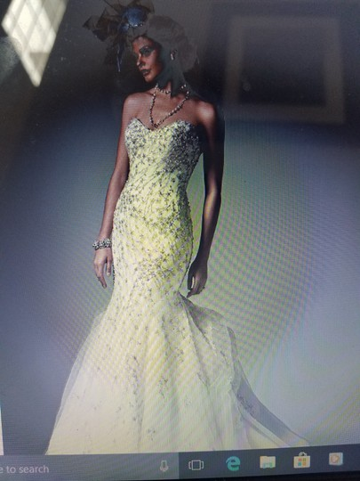 Preload https://item3.tradesy.com/images/sottero-and-midgley-ivory-with-pewter-accent-tulle-donalee-9567-modern-wedding-dress-size-14-l-22854557-0-0.jpg?width=440&height=440