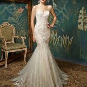 Enzoani Ivory Over Coffee Lace Tulle Blue By Jion Sexy Wedding Dress Size 8 (M)