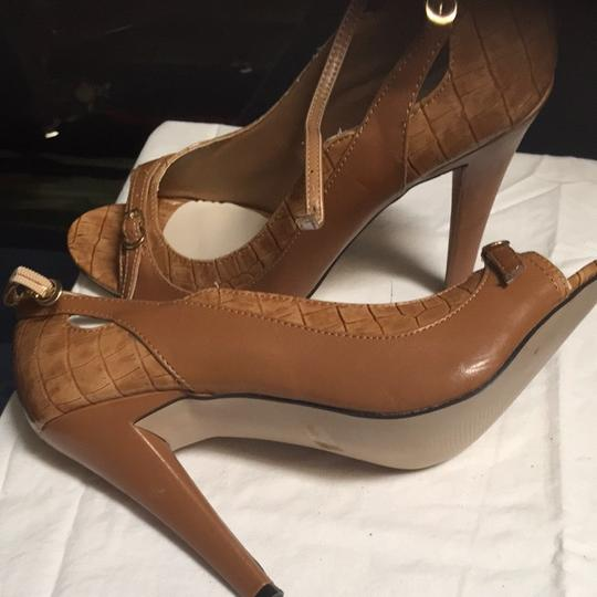 Joey O Camel Pumps