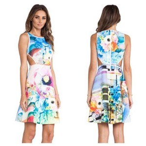 Clover Canyon Dress