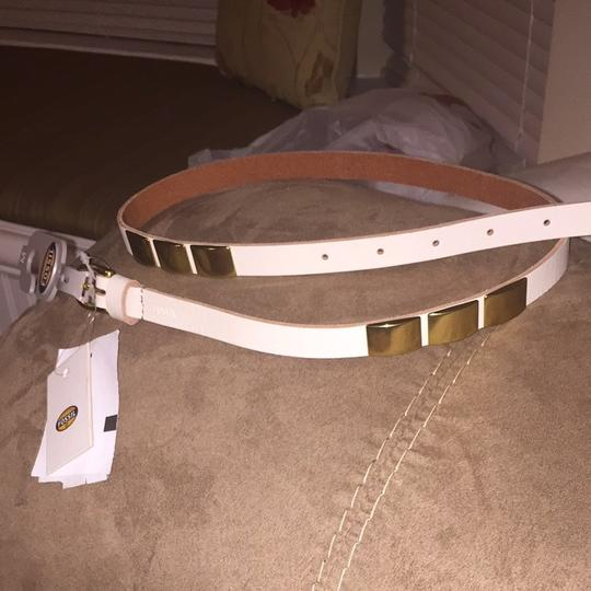 Fossil Brand-New Fossil Belt