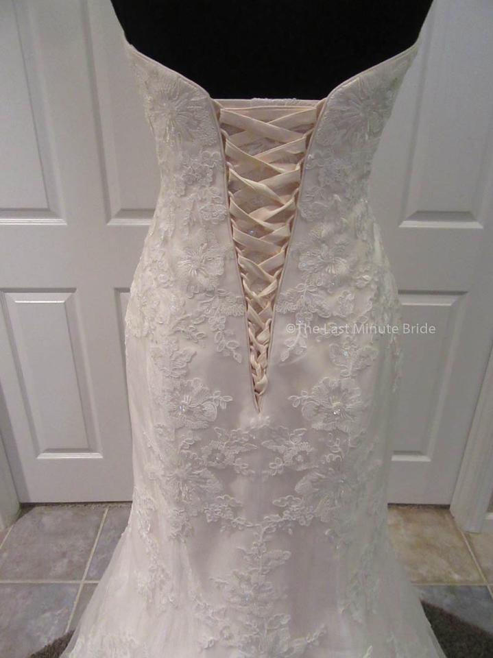 The last minute bride ivory champagne lace emily feminine for Last minute wedding dress