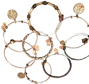 Alex and Ani Bead and Charm Bracelets
