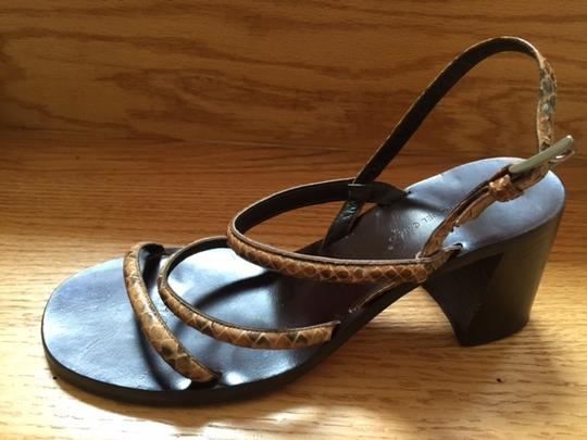 Roberto Del Carlo Brown/snake Sandals