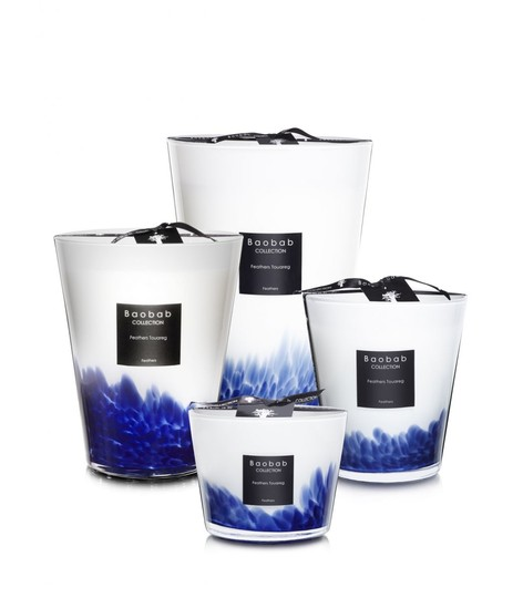 Baobab Feathers Collection Large Candle Image 2
