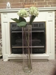 Unwritten 10 - 24 Inch Tall Glass Vases Reception Decoration