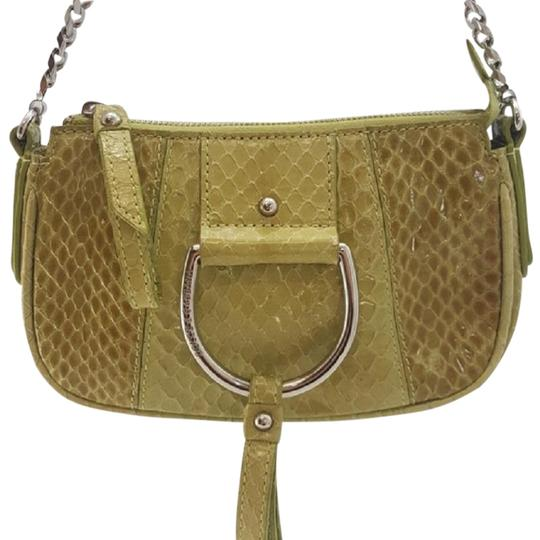 Preload https://img-static.tradesy.com/item/23058297/dolce-and-gabbana-snakeskin-chain-purse-green-yellow-clutch-0-1-540-540.jpg