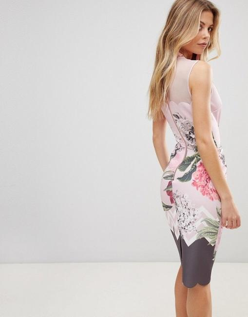 Preload https://item4.tradesy.com/images/ted-baker-dusty-pink-arionah-palace-gardens-scallop-detail-mid-length-formal-dress-size-6-s-23060833-0-3.jpg?width=400&height=650