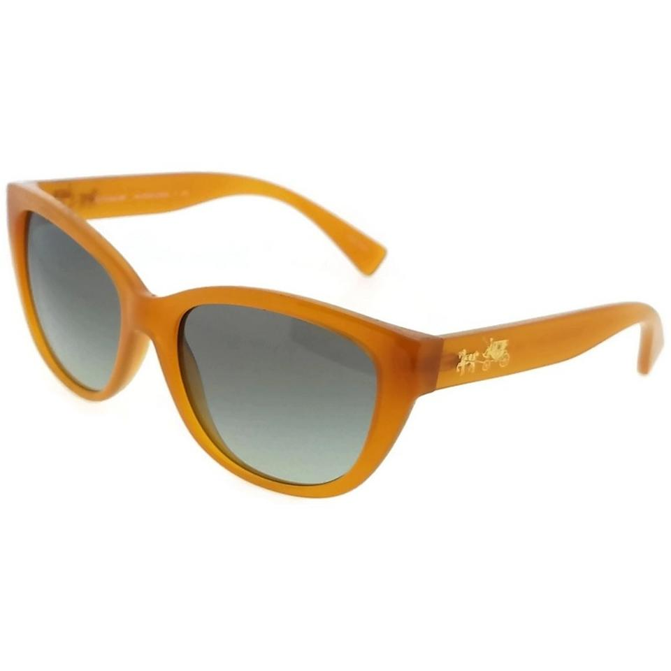 864eed4491896 ... official coach hc8163 546311 cat eye womens amber frame grey lens  genuine sunglasses 53fa3 0910e