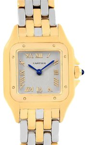 Cartier Cartier Panthere Ladies Yellow Gold Steel Ladies Watch 1070