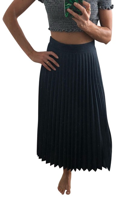 Preload https://item3.tradesy.com/images/zara-grey-pleated-skirt-size-0-xs-25-23102757-0-1.jpg?width=400&height=650