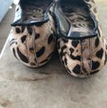 Sam Edelman Tan animal print, silver toe Flats Image 1