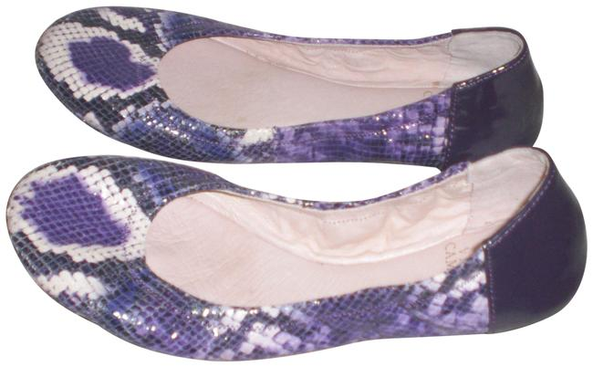 Item - Multi Color Ellen Ballet Flats Size US 8 Regular (M, B)