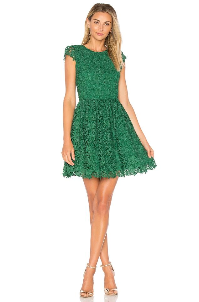 Alice + Olivia Green Corina Ivy Floral Lace Allover Fit & Flare ...