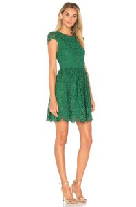 Alice + Olivia Floral Skater Party Lace Dress