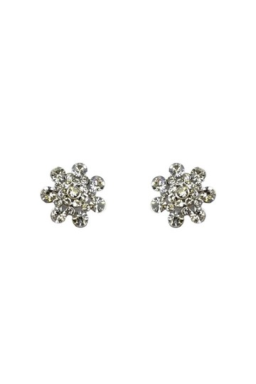 Preload https://img-static.tradesy.com/item/23174585/silver-earrings-0-0-540-540.jpg