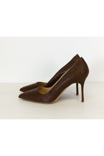 Manolo Blahnik Ostrich Heels brown Pumps