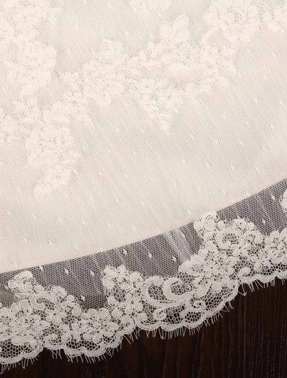 Pronovias Diamond White (Off White) Lace and Dotted Swiss Tulle Udine Formal Wedding Dress Size 10 (M) Image 10