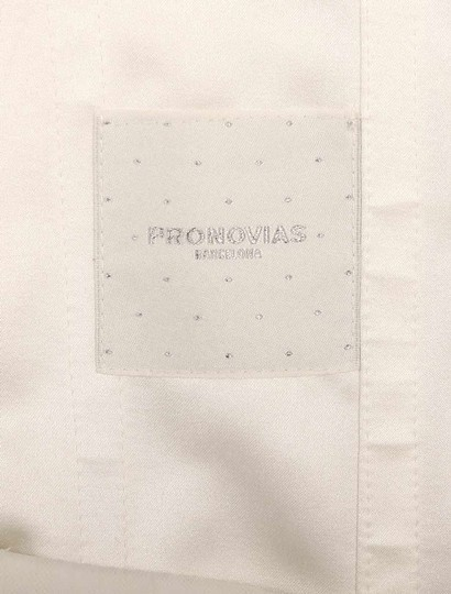 Pronovias Diamond White (Off White) Lace and Dotted Swiss Tulle Udine Formal Wedding Dress Size 10 (M) Image 11