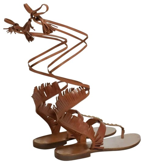 Preload https://img-static.tradesy.com/item/23198818/zara-brown-leather-fringed-lace-up-sandals-size-us-6-regular-m-b-0-1-540-540.jpg