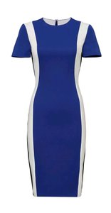 Raoul Casual Night Out Work Dress
