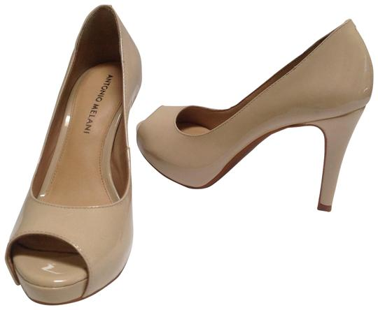 Preload https://img-static.tradesy.com/item/23212457/antonio-melani-nude-pumps-size-us-6-regular-m-b-0-1-540-540.jpg