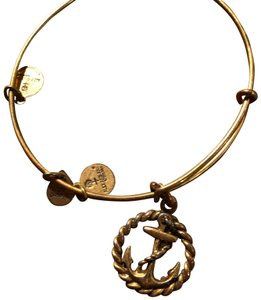 Alex and Ani Alex + Ani Anchor Bracelet