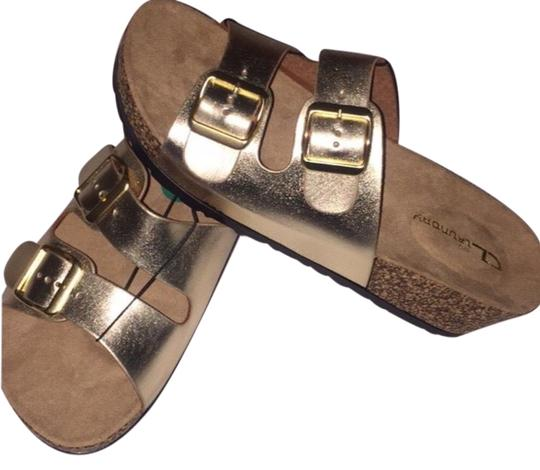 Preload https://img-static.tradesy.com/item/23243657/cl-by-chinese-laundry-gold-sandals-size-us-75-regular-m-b-0-1-540-540.jpg