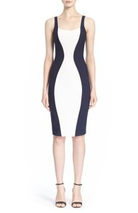 Elizabeth and James Sheath Fitted Dress