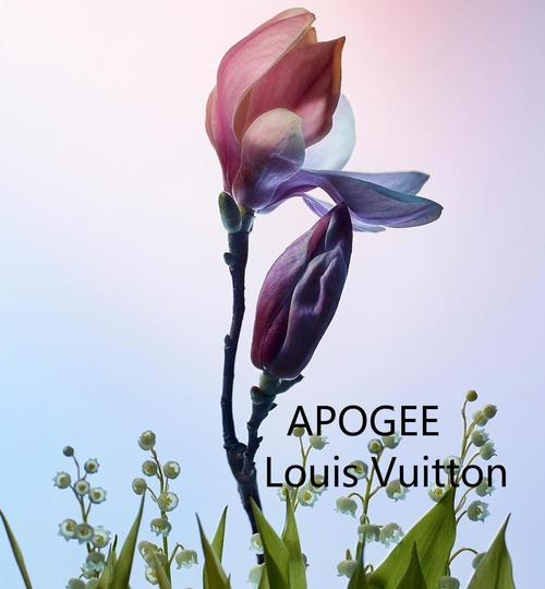 Preload https://item1.tradesy.com/images/louis-vuitton-clear-apogee-2x-2ml-edp-in-refillable-spray-only-fragrance-23332400-0-3.jpg?width=440&height=440