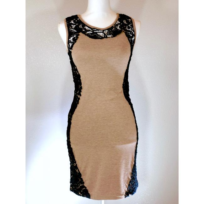 Torn by Ronny Kobo Lace Cotton Sleeveless Summer Fitted Dress