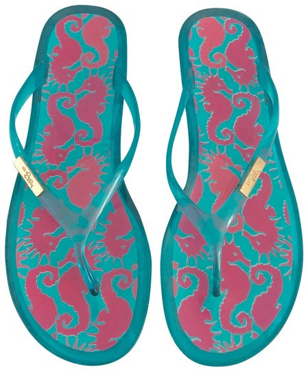 Preload https://item2.tradesy.com/images/lilly-pulitzer-blue-shelly-jelly-hold-you-horses-flip-flops-sandals-size-us-9-regular-m-b-23340131-0-1.jpg?width=440&height=440