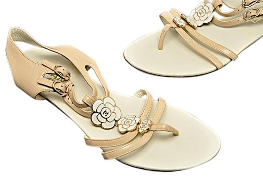 Preload https://item2.tradesy.com/images/chanel-nude-leather-flat-with-gold-ivory-camille-flower-sandals-size-eu-395-approx-us-95-regular-m-b-23340301-0-1.jpg?width=440&height=440