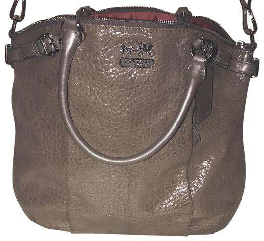 Preload https://img-static.tradesy.com/item/23340544/coach-metallic-grey-beige-leather-hobo-bag-0-1-540-540.jpg